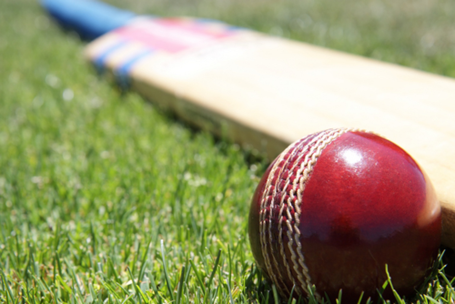 What Does it Take to Become a Cricket Coach?